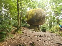 DSCN5596 (norwin_galdiar) Tags: bretagne brittany breizh finistere monts darrée nature landscape paysage