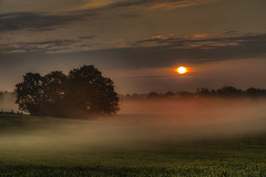 Colorful Foggy Sunset (Klaus Ficker --Landscape and Nature Photographer--) Tags: morning morninglight sunset fog redsun field morgen sonnenuntergang nebel acker wolken ruhe relex kentuckyphotography klausficker canon eos5dmarkiv usa kentucky frankfort