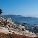 17-Mile Drive - Pebble Beach, California