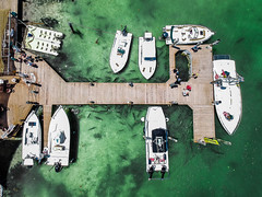 (Fifinator) Tags: dji spark drone aerial robbies key largo islamorada fish tarpon feeding keys florida feed dock boats boat boating from above