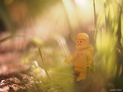 Golden hour on Proxima Centauri b (JoeCow) Tags: toyphotography exoplanet legospace lego