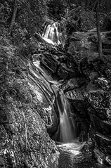 "looking upstream as the water gushes in long exposure towards the Lower Bridge behind the viewpoint, falls of Bruar, fine art black & white, Perth & Kinross, Scotland, UK (grumpybaldprof) Tags: bw blackwhite ""blackwhite"" ""blackandwhite"" noireetblanc monochrome ""fineart"" striking artistic interpretation impressionist stylistic style contrast shadow bright dark black white illuminated ""longexposure"" canon 7d ""canon7d"" tamron 16300 16300mm ""tamron16300mmf3563diiivcpzdb016"" ""perthandkinross"" pitlochry"" atholl"" ""robertburns"" ""dukeofatholl"" scotland uk ""fallsofbruar"" ""bruarwater"" waterfalls bridges ""glengarry"" ""lowerbridge"" ""upperbridge"" ""naturalarch"" trees forest paths walks water rocks stones arch path wood"