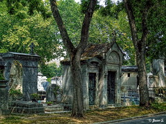 Le chemin ombragé (Jean S..) Tags: montparnasse cemetery trees shadows green graves outdoors