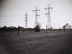 Power lines pylons (photo 2) (Matthew Paul Argall) Tags: jcpenneyelectronicstrobepocketcamera fixedfocus 110 110film subminiaturefilm lomographyfilm grainyfilm grainy 100speedfilm 100isofilm blackandwhite blackandwhitefilm powerlines powerlinespole powerlinespylon untouchedandunedited