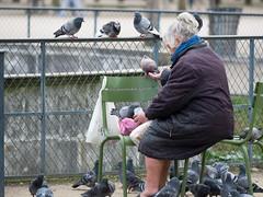 MrUlster 20170310 - Paris - P3103242 (Mr Ulster) Tags: pigeons france elderly park paris travel feeding