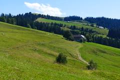 Grosshorbenschwand, Oberbergegg, Wachthubel Eggiwil (Martinus VI) Tags: emmental eggiwil schangnau kanton de bern canton berne berna berner bernese schweiz suisse suiza switzerland svizzera swiss y180812 martinus6 martinus6xy martinusvi martinus 12082018