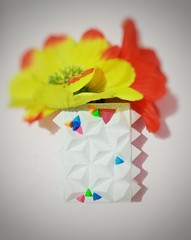 Wall decor holder (gitanjali_murmu) Tags: paperart papercraft geometricshapes wallhanging paperflowers