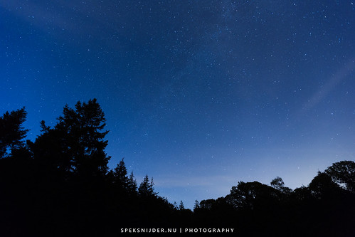 Waiting for Perseids
