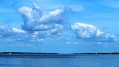 2018.08.19 夏空 (eriko_jpn) Tags: summer clouds toneriver river