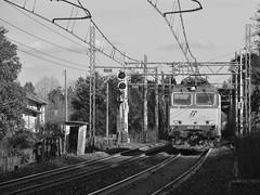 carciano #18, set 3 (train_spotting) Tags: carciano tigre tigrone e652133 trenitaliacargo trenitalia ticargo divisionecargo mir merciitaliarail nikond7100