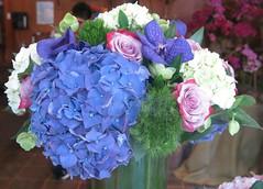 Pour Liliane, a l'occasion de son anniversaire ! (Pushapoze (NMP)) Tags: flowers fleurs bouquet blue bleu hydrangea