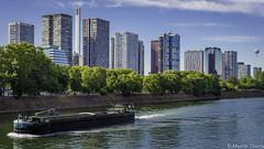 Vue sur Paris (musette thierry) Tags: paris france capture capital vue panorama nikon parpective bateau achitecture 1835mm paysage