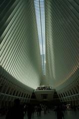 DSC07144 (RosieTulips) Tags: oculus worldtradecenter newyork