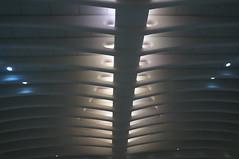 DSC07136 (RosieTulips) Tags: oculus worldtradecenter