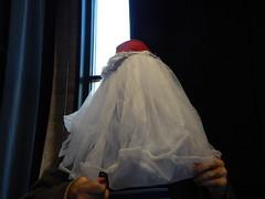 DSCN1894 (mestes76) Tags: 092417 duluth minnesota duluthchildrensmuseum mark me ibelievecaelintookthisone costumes thekidsdressedmeup