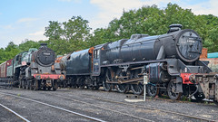 LMS 'Black 5' No. 44806,  Grosmont Shed, NYMR, 24 July 2018 (simage61) Tags: transportation railway heritage nymr locomotive steam lms 460 class05 blackfive 44806 britishrailways standardclass4 4mt 75029 thegreenknight grosmont yorkshirenorth englandnorth