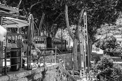 Soller (janetfrerichs) Tags: mallorca d610 spain nikon train zug blackwhite historic historisch sideseeing holiday urlaub soller trainstation bahnhof vollformat tram strasenbahn touristic