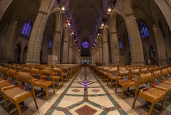 Washington National Cathedral Fisheye Lens (johngoucher) Tags: approved washingtonnationalcathedral architecture cathedral washingtondc sonyimages sonyalpha alphacollective architecturalphotography church gothicarchitecture interior fisheyelens rokinon aisle ceiling room symmetry fisheye columns pillars stainedglass windows peaks arches