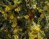 Granite 40x 00004 (rcblackmi) Tags: rock mineral macro zerene photomicrograph granite