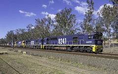 Pacific National loco's 8241, 8232, 8212 and 8250 as CA79 (Paulie's Time Off Photography) Tags: freighttrain locomotive8241 pacificnational werringtonnsw 8241 railpage:class=51 railpage:loco=8241 rpaunsw82class rpaunsw82class8241 ca79 olympus olympusomdem10 paulleader trainspotting train locomotive loco engine diesel railway rail railroad railtransport transport transportation freight nsw newsouthwales australia