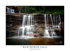Wentworth Falls Australia (sugarbellaleah) Tags: wentworthfalls waterfall lush flora flowing bluemountains amazing refreshing australia mountain rocks cascading beauty nature environment leaves rockpool