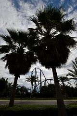 Silhouettes (tim.perdue) Tags: florida vacation 2018 summer orlando seaworld cocoa beach silhouettes palm trees rollercoaster sky clouds