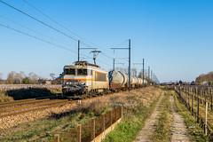 26 février 2018 BB 7439 Train 58880 Sibelin -> Bordeaux-Hourcade Portets (33) (Anthony Q) Tags: portets nouvelleaquitaine france 26 février 2018 bb 7439 train 58880 sibelin bordeauxhourcade 33 ferroviaire fret sncf bb7200 bb7200pv bb7439 wagon gironde aquitaine