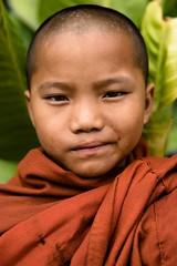 Le prix du silence (Tom Piaï Photographie) Tags: enfant bonze religieux bouddhiste bouddhisme bouddha myanmar burma birmanie kengtung rencontre portrait visage face ouverture spirituel natgeo nationalgeographic geo travel traveler explorer voyage voyager children boy garçon