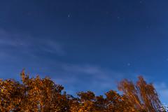 Perseids 2018 / Dresden / 2018-08-12 (astrofreak81) Tags: perseid meteor perseids 2018 perseids2018 perseiden sternschnuppe night sky dresden 20180812