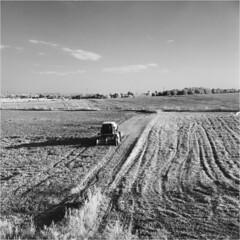 Harvest time / Czas żniw (Piotr Skiba) Tags: seagull4a infrared rolleiir400 film bw monochrome tlr 6x6 siemianowice śląskie poland pl piotrskiba field harvest harvester landscape shadows afternoon