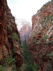 the Red Arch Mountain from the Angels Landing trail (debreczeniemoke) Tags: unitedstatesofamerica amerikaiegyesültállamok usa unitedstates egyesültállamok us america utah zionnationalpark zioncanyon angelslanding redarch olympusem5