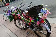 Mobile Flower Garden (Georgie_grrl) Tags: bicycle mobilegarden flowers decorative decoration colourful cheerful bikingtoronto changeyourliferideabike toronto ontario