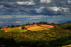 Toskana (Thilo Sengupta) Tags: toskana italien picoftheday photooftheday wonderful beautiful landscape wolken clouds sonne