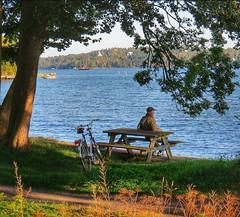 ~ resting and watching ~ Lidingö, Stockholm (Tankartartid) Tags: båtar båt boats boat strand bänk bench man cykel bicycle view utsikt landskap landscape träd tree trees sea vatten water natur nature norden nordic stockholm lidingö europe sverige sweden