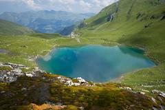 the Urdensee legend... (Toni_V) Tags: m2408501 rangefinder digitalrangefinder messsucher leicam leica mp typ240 type240 28mm elmaritm12828asph hiking wanderung randonnée escursione urdensee schanfigg bergsee mountainlake tschiertschen alps alpen graubünden grisons grischun switzerland schweiz suisse svizzera svizra europe green summer arosa ©toniv 2018 180804