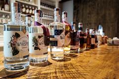 20180805 gin lineup (chromewaves) Tags: fujifilm fujinon xf 1855mm f284 r lm ois xt20