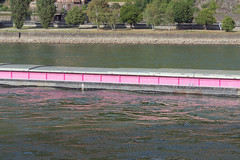 Shipping On The Rhine (pni) Tags: rhein rhine riverbank river water tree stone freight ship pink reflection stgoar ger18 germany deutschland pekkanikrus skrubu pni this
