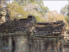 Angkor, Preah Khan Temple 20180203_133006 DSCN2736 (CanadaGood) Tags: asia seasia asean cambodia siemreap angkor buddhist hindu khmer preahkhan temple tree building architecture archaeology canadagood 2018 thisdecade color colour