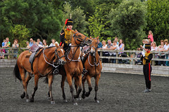 Royal Horse Artillery Ride XI (meniscuslens) Tags: horse horses hounds heroes trust royal artillery arena event charity soldier uniform aylesbury buckinghamshire princes risborough high wycombe