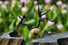 Jump ! (Steve4343) Tags: steve4343 nikon national forest red green blue yellow orange white clouds sky beautiful autumn beauty county lake cloud colorful woods garden gardens happy leaves rocks wildlife landscape mountain tree trees grass water wood summer spring macro flower flowers at jump bangkok thailand mall d70