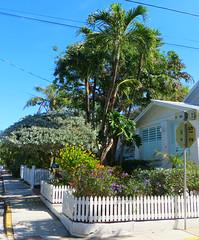 Key West (Florida) Trip 2017 7988Ri (edgarandron - Busy!) Tags: florida keys floridakeys keywest house houses