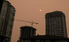 Hazy sky (jeslu) Tags: panasonic dczs200 smokey skies wildfires