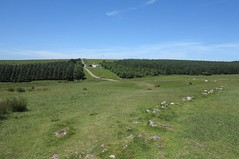 roughtor63 (West Country Views) Tags: rough tor cornwall bodmin moor scenery