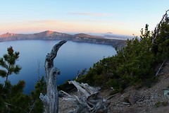 Crater Lake: A morning spot to remember (daveynin) Tags: craterlake crater lake sunrise morning logs volcanic forest pines