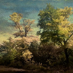 More trees in a countryside thumbnail
