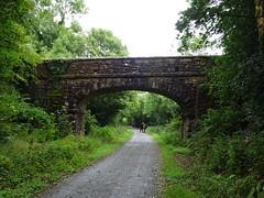 DSC01040 (guyfogwill) Tags: bridge guyfogwill unitedkingdom devon okehampton dartmoor august gbr dartmoornationalpark ex20 westdevon meldon dartmoorrailway