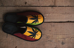 Colorful Shoes With Marijuana Symbol (dejankrsmanovic) Tags: brand new colorful color jamaica marijuana tweed leather shoe wear symbolsign grass object stilllife wood wooden floor cloth fashion symbolic addiction design style lifestyle board plank domestic copyspace background simple pair two foot footwear yellow black