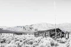Randsburg, California (paccode) Tags: solemn mojave landscape desert bushes brush blackwhite quiet california abandoned monochrome shack d850 alone winter scary creepy antique forgotten hills serious randsburg unitedstates us