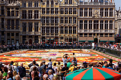 Le tapis de fleurs de bégonias de la Grand Place de Bruxelles - Begonias flower carpet at the Grand Place in Brussels (p.franche malade - sick) Tags: bégonias grandplacedebruxelles gens streetshot instantané couleurs tourisme begonias brusselsgrandplace people instant colors tourism rouge jaune blanc terreau red yellow white pottingsoil sony sonyalpha65 dxo photolab bruxelles brussel brussels belgium belgique belgïe europe pfranche pascalfranche