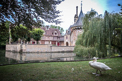 """One grumpy owner, the swan: walking round from the left of the drawbridge and all the way round and back, the lovely Château de Saint Germain de Livet, fine art colour, Pays d'Auge, Normandy, France (grumpybaldprof) Tags: """"châteaudesaintgermaindelivet"""" """"paysd'auge"""" normandy normandie france medieval renaissance artists collombage """"halftimber"""" moat castle chateau liseiux """"greenstones"""" copper slate beautiful history monument museum """"eugènedelacroix"""" calvados """"léonriesener"""" checked charming lovely water reflection drawbridge towers dragons colour colours colourful """"wideangle"""" ultrawide reflections canon 70d """"canon70d"""" sigma 1020 1020mm f456 """"sigma1020mmf456dchsm"""" mood atmosphere"""